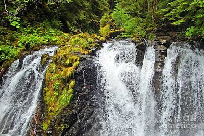 Photograph - Chilkoot Falls by Phillip Allen