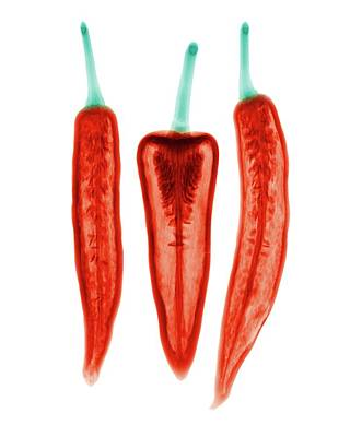 Trio Photograph - Chilli Peppers by Brendan Fitzpatrick