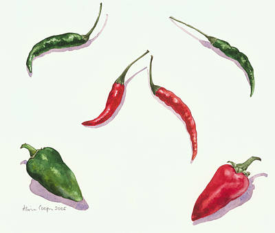 Food And Beverage Drawing - Chillies And Peppers by Alison Cooper