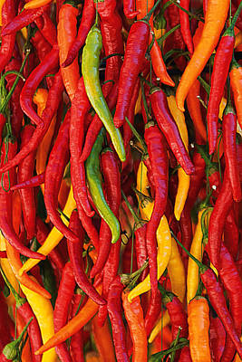Photograph - Chillies by David Davies