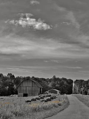 Chillin On A Dirt Road Art Print by Anthony Thomas