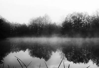 Photograph - Chilly Morning Reflections by Miguel Winterpacht