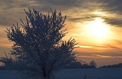 Chilly Sunrise Art Print