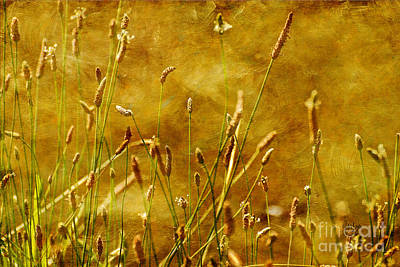 Weed Digital Art - Chimney Sweeps by Lois Bryan