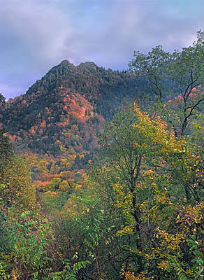 Chimney Tops, Great Smokey Mountains Art Print