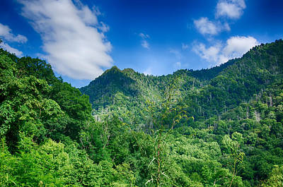 Photograph - Chimney Tops Mountain In Great Smoky Mountains  by Alex Grichenko