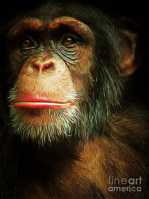 Chimp 20150210brun V3 Art Print by Wingsdomain Art and Photography