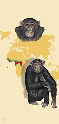 Ape. Great Ape Painting - Chimpanzee Pan Troglodytes Shrinking Habitats - Zoo Interpretive Panels - Great Apes - Schautafeln by Urft Valley Art