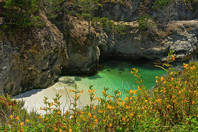 Point Lobos Photograph - China Cove And Beach, Point Lobos State by Michel Hersen