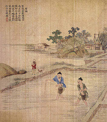 Painting - China Sowing Rice by Granger