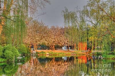 Chineese Garden Art Print