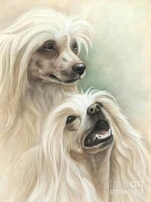 Dog Painting - Chinese Crested by Tobiasz Stefaniak
