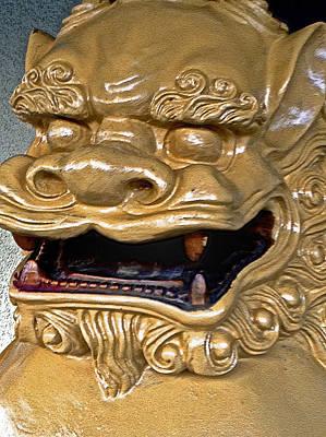 Photograph - Chinese Dragon II by Bill Owen