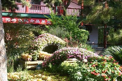 Photograph - Chinese Garden by Barbie Corbett-Newmin