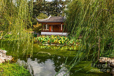 Weeping Willow Photograph - Chinese Garden Breeze by Jamie Pham