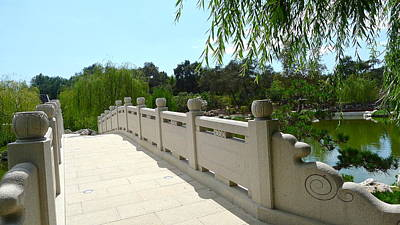 Photograph - Chinese Garden Bridge by Denise Mazzocco