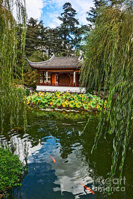 Weeping Willow Photograph - Chinese Garden Dream by Jamie Pham