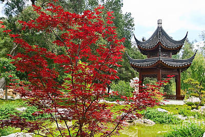 Chinese Red Maple Tree Photograph - Chinese Garden With Pagoda And Lake. by Jamie Pham