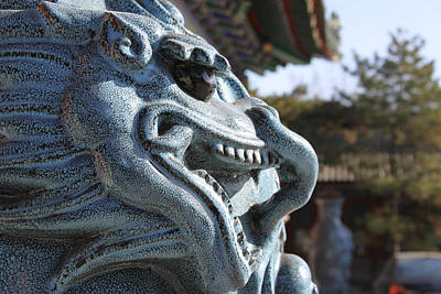 Photograph - Chinese Gargoyle by Dave Hall