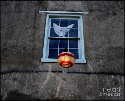 Lantern Digital Art - Chinese Lantern West Virgina  by Steven Digman