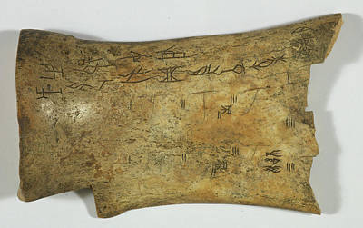 Oracle Photograph - Chinese Oracle Bone by British Library