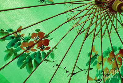 Photograph - Chinese Parasol by Nora Martinez