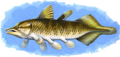 Triassic Digital Art - Chinlea, An Extinct Lobe-finned Fish by H. Kyoht Luterman