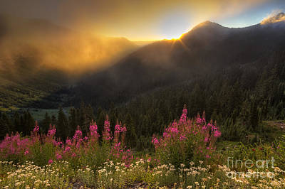 August Photograph - Chinook Pass Sunrise II by Mark Kiver