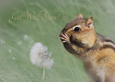 Squirrel Digital Art - Chippy Get Well Soon by Lori Deiter