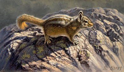 Chipmunk Painting - Chippy On The Rocks by Paul Krapf