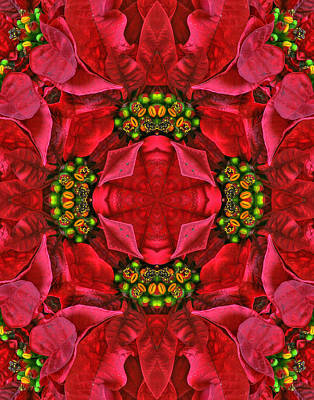 Photograph - Christmas Kaleidoscope II by Dawn Currie