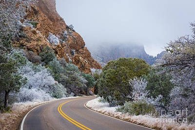 Chisos Winter Road Art Print by Inge Johnsson