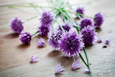Photograph - Chives by Kati Molin