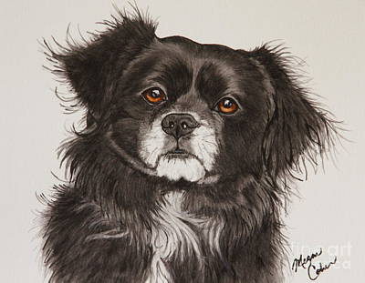 Watercolor Pet Portraits Painting - Chloe by Megan Cohen