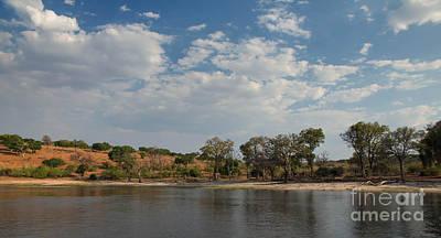 Photograph - Chobe Reserve by Kati Tomlinson
