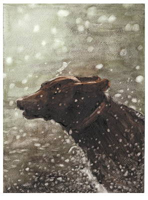 Chocolate Lab Drawing - Chocolate Lab In Water Watercolor Portrait by Mike Theuer