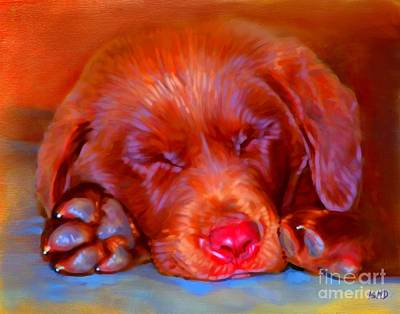 Chocolate Labrador Puppy Art Print by Iain McDonald