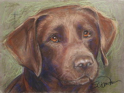 Painting - Chocolate Labrador by Sciandra