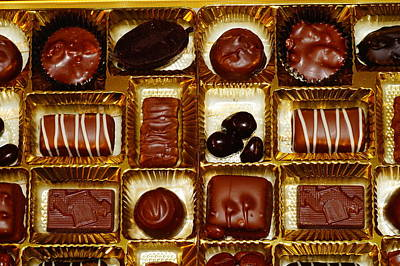 Photograph - Chocolate Lovers by Mike Murdock