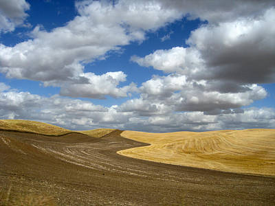 Photograph - Chocolaty Brown Palouse by Anne Mott