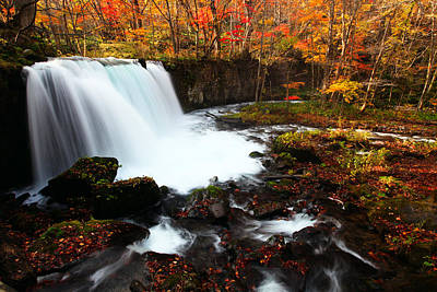 Photograph - Choushi - Ootaki Waterfall In Autumn by Brad Brizek