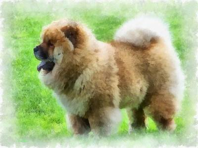 Dignified Painting - Chow Chow by Maciek Froncisz