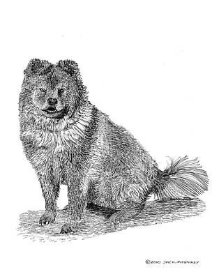 Dog Art Drawing - Woofy Chow Chow Woofy by Jack Pumphrey