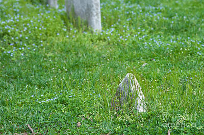 Photograph - Christ Church Graveyard by Kay Pickens