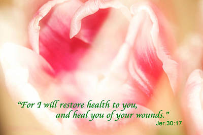Photograph -  I Will Restore Health To You  by Femina Photo Art By Maggie
