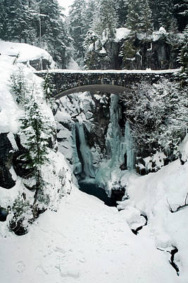 Olympic National Park Photograph - Christine Falls, Mount Rainier National by Tom Norring