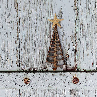 Wall Art - Photograph - Christmas 1 by Debbie Hartley