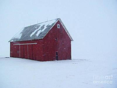 Photograph - Christmas Barn by Tim Good