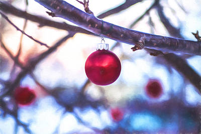 Photograph - Christmas Bauble by Chris Bordeleau