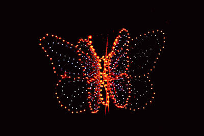 Photograph - Christmas Butterfly by Elvis Vaughn
